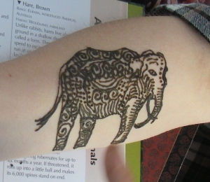 Henna Elephant