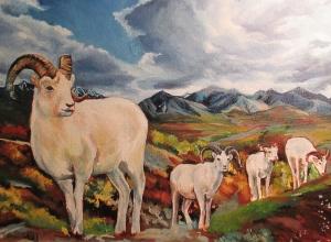 Sarah Glaser painting dall sheep